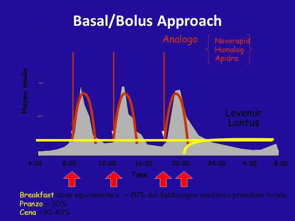 4:0016:0020:0024:004:00 8:00 12:008:00 Time Plasma insulin Levemir Lantus Basal/Bolus Approach Breakfast dose equivalente a ~ 20% del fabbisogno insul
