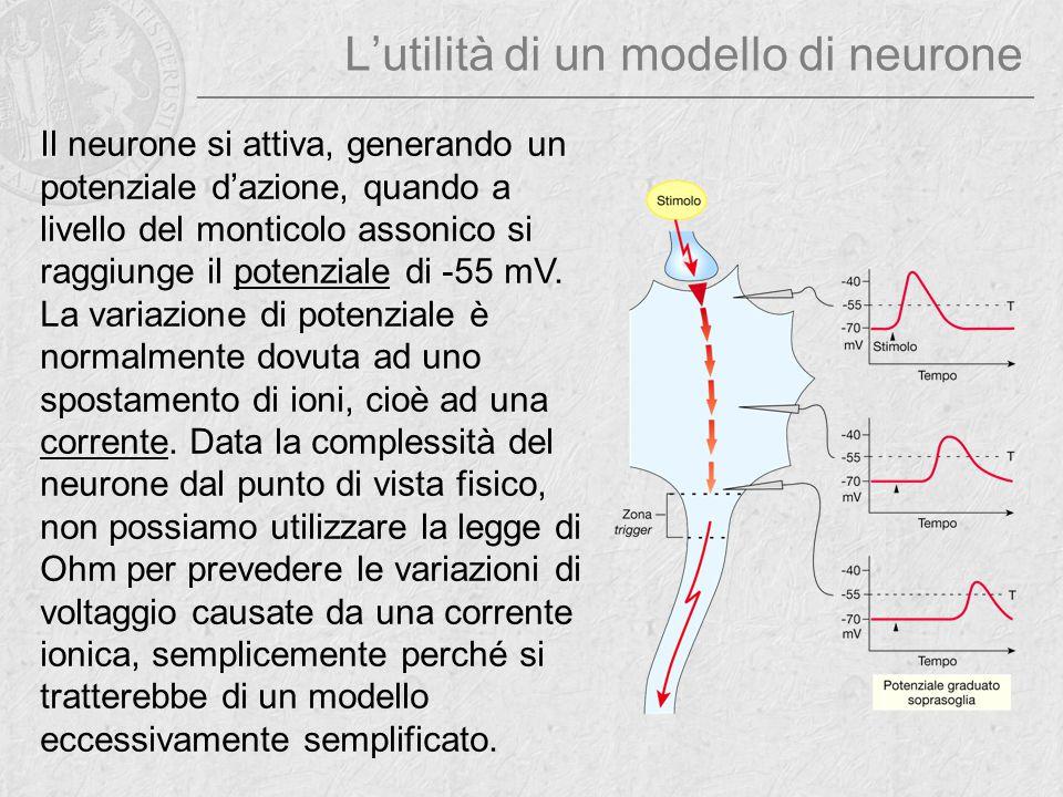 L'utilità di un modello di neurone Il neurone si attiva, generando un potenziale d'azione, quando a livello del monticolo assonico si raggiunge il pot