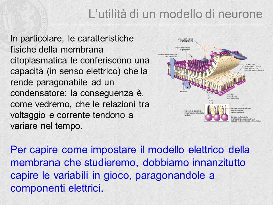 La capacità di membrana Un condensatore è costituito da due elementi conduttori separati da uno strato di materiale isolante [click].