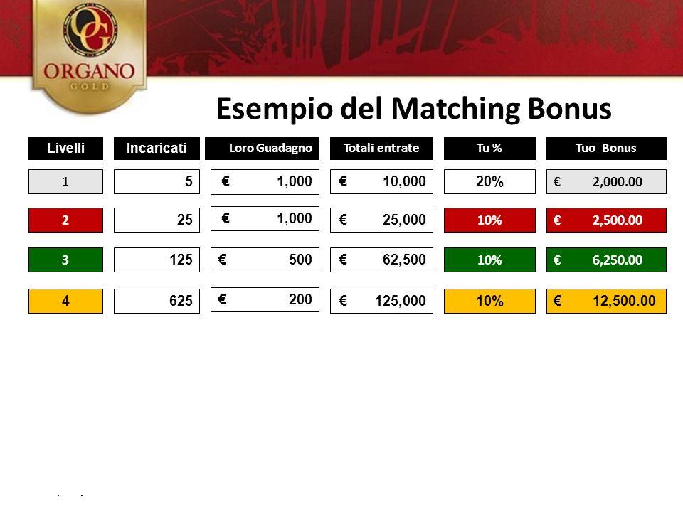 02/09/11 LivelliIncaricati Loro GuadagnoTotali entrateTu %Tuo Bonus 1 5€ 1,000€ 10,00020% € 2,000.00 2 25 € 1,000 € 25,000 10%€ 2,500.00 3 125€ 500€ 6