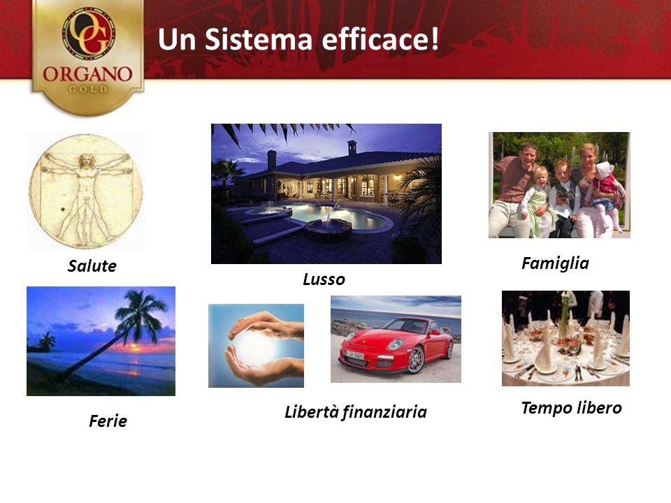 Ferie Salute Tempo libero Hai qualche desiderio? Libertà finanziaria Famiglia Lusso Un Sistema efficace!