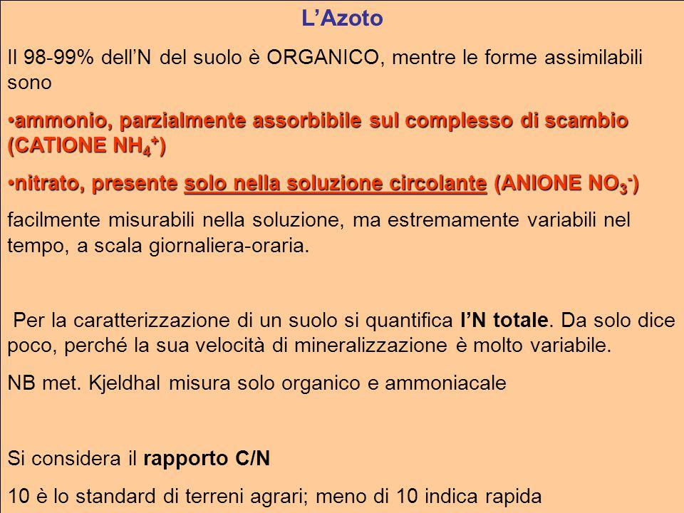 L'Azoto Il 98-99% dell'N del suolo è ORGANICO, mentre le forme assimilabili sono ammonio, parzialmente assorbibile sul complesso di scambio (CATIONE NH 4 + )ammonio, parzialmente assorbibile sul complesso di scambio (CATIONE NH 4 + ) nitrato, presente solo nella soluzione circolante (ANIONE NO 3 - )nitrato, presente solo nella soluzione circolante (ANIONE NO 3 - ) facilmente misurabili nella soluzione, ma estremamente variabili nel tempo, a scala giornaliera-oraria.