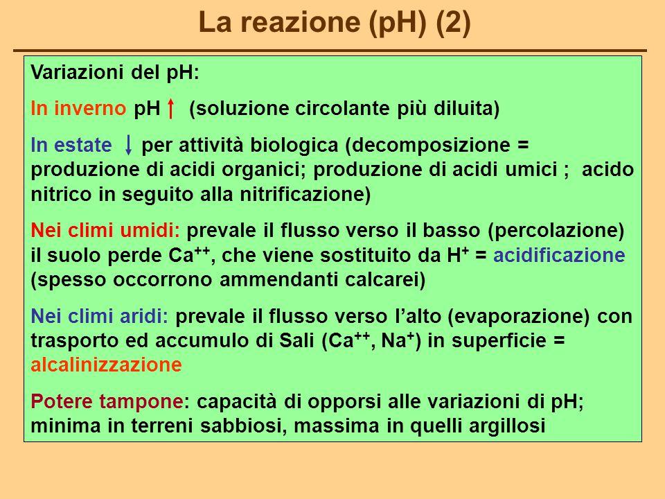 La reazione (pH) (2) Variazioni del pH: In inverno pH (soluzione circolante più diluita) In estate per attività biologica (decomposizione = produzione di acidi organici; produzione di acidi umici ; acido nitrico in seguito alla nitrificazione) Nei climi umidi: prevale il flusso verso il basso (percolazione) il suolo perde Ca ++, che viene sostituito da H + = acidificazione (spesso occorrono ammendanti calcarei) Nei climi aridi: prevale il flusso verso l'alto (evaporazione) con trasporto ed accumulo di Sali (Ca ++, Na + ) in superficie = alcalinizzazione Potere tampone: capacità di opporsi alle variazioni di pH; minima in terreni sabbiosi, massima in quelli argillosi