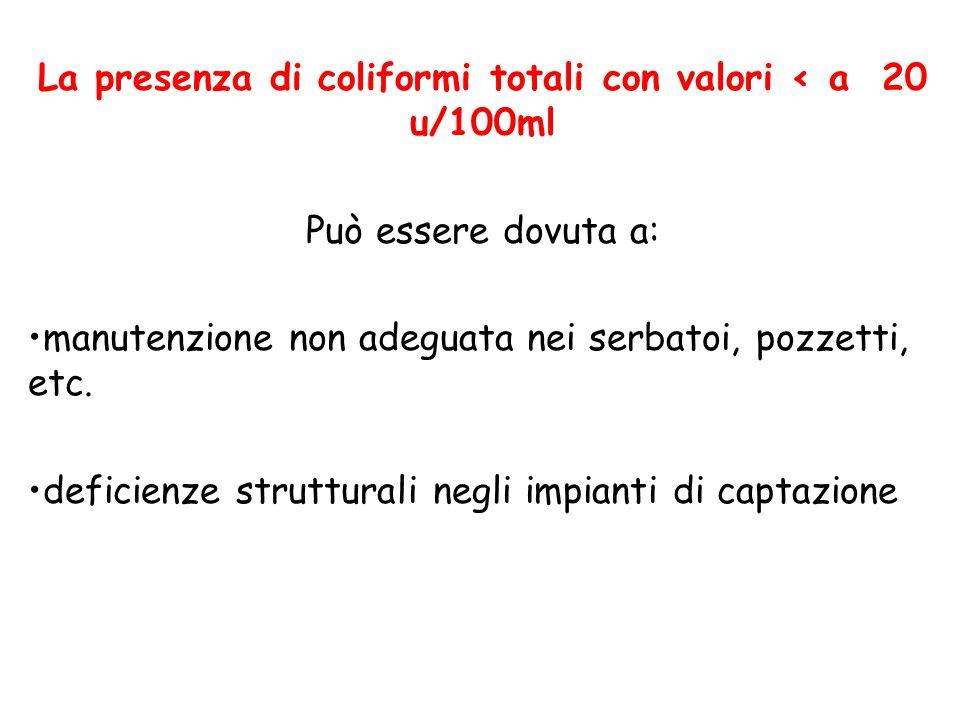 La presenza di coliformi totali con valori < a 20 u/100ml Può essere dovuta a: manutenzione non adeguata nei serbatoi, pozzetti, etc.