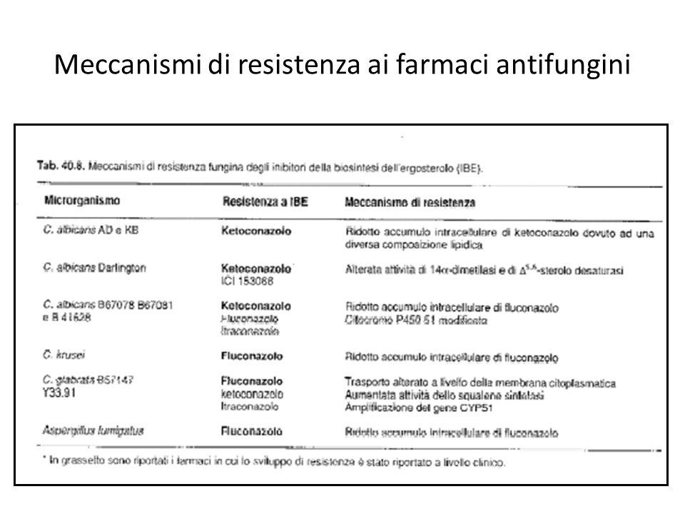 Meccanismi di resistenza ai farmaci antifungini