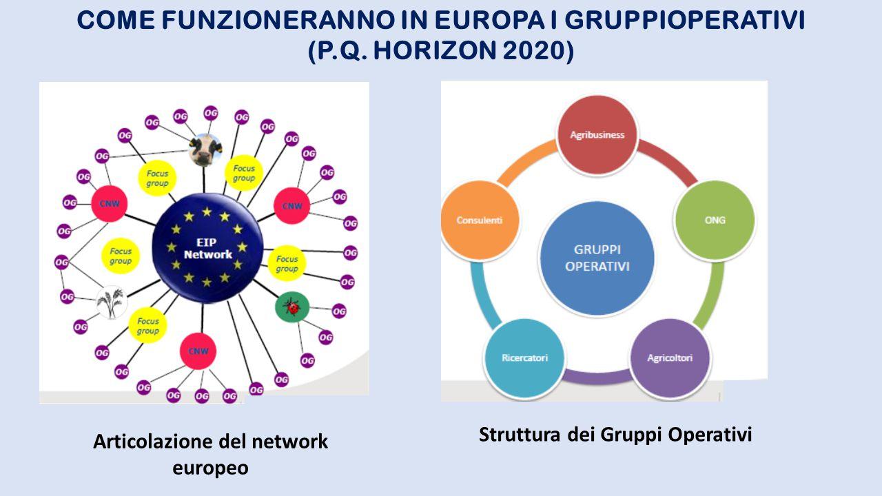 COME FUNZIONERANNO IN EUROPA I GRUPPIOPERATIVI (P.Q. HORIZON 2020) Articolazione del network europeo Struttura dei Gruppi Operativi