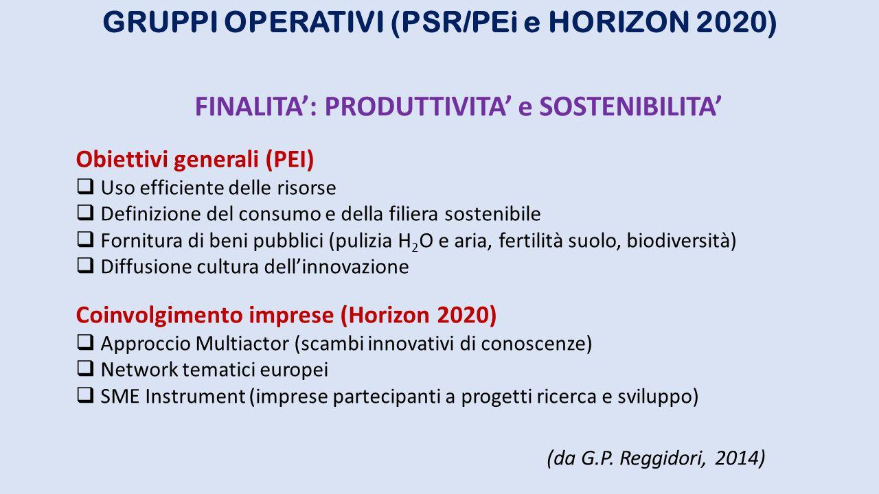 GRUPPI OPERATIVI (PSR/PEi e HORIZON 2020) FINALITA': PRODUTTIVITA' e SOSTENIBILITA' Obiettivi generali (PEI)  Uso efficiente delle risorse  Definizi