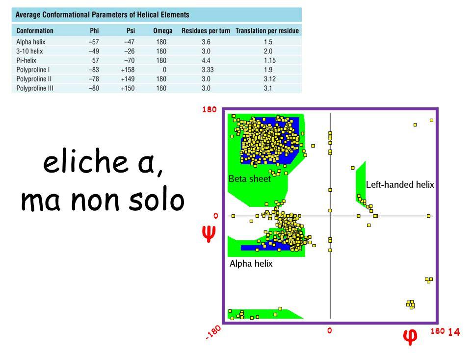 φ ψ 180 -180 0 0 eliche α, ma non solo 14