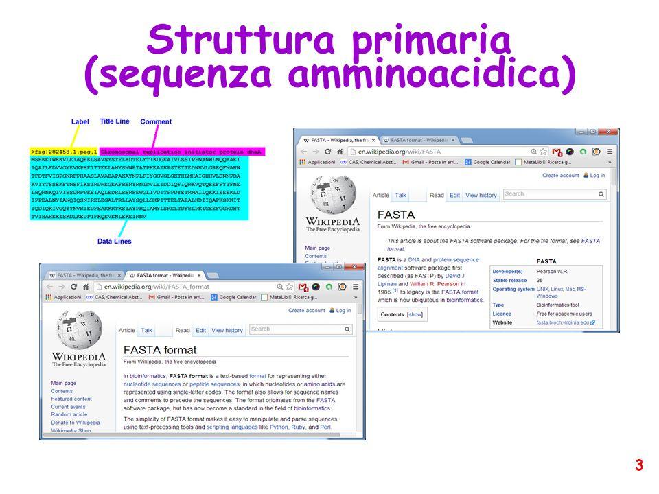 Struttura primaria (sequenza amminoacidica) 3