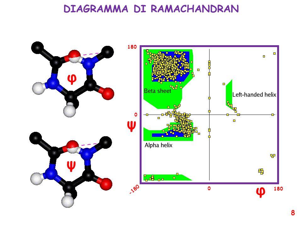 DIAGRAMMA DI RAMACHANDRAN φ ψ φ ψ 180 -180 0 0 8