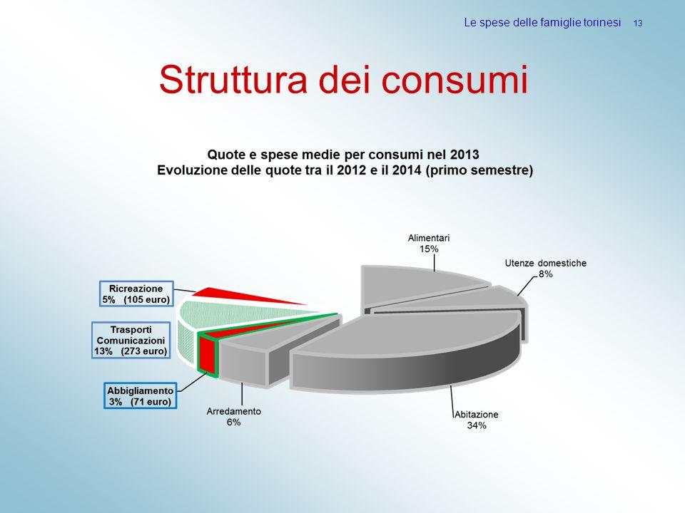 Struttura dei consumi Le spese delle famiglie torinesi 13