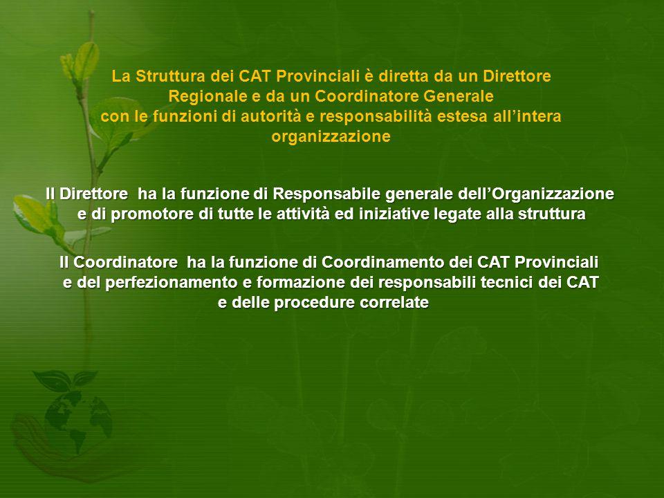 La Struttura dei CAT Provinciali è diretta da un Direttore Regionale e da un Coordinatore Generale con le funzioni di autorità e responsabilità estesa all'intera organizzazione Il Direttore ha la funzione di Responsabile generale dell'Organizzazione e di promotore di tutte le attività ed iniziative legate alla struttura Il Coordinatore ha la funzione di Coordinamento dei CAT Provinciali e del perfezionamento e formazione dei responsabili tecnici dei CAT e delle procedure correlate
