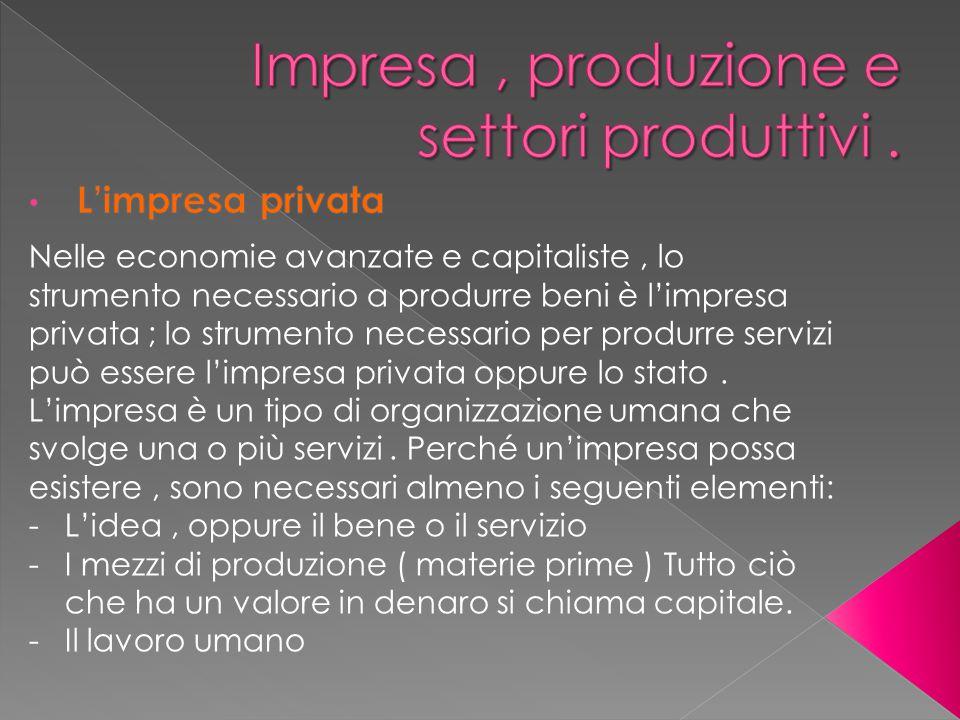 Nelle economie avanzate e capitaliste, lo strumento necessario a produrre beni è l'impresa privata ; lo strumento necessario per produrre servizi può