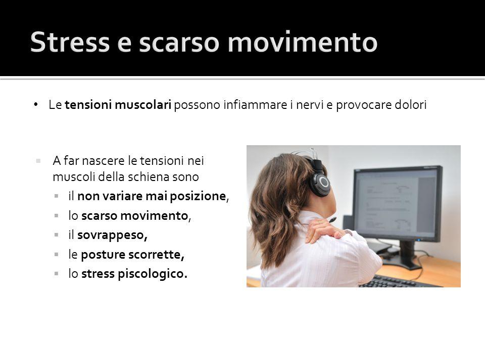Le tensioni muscolari possono infiammare i nervi e provocare dolori  A far nascere le tensioni nei muscoli della schiena sono  il non variare mai po