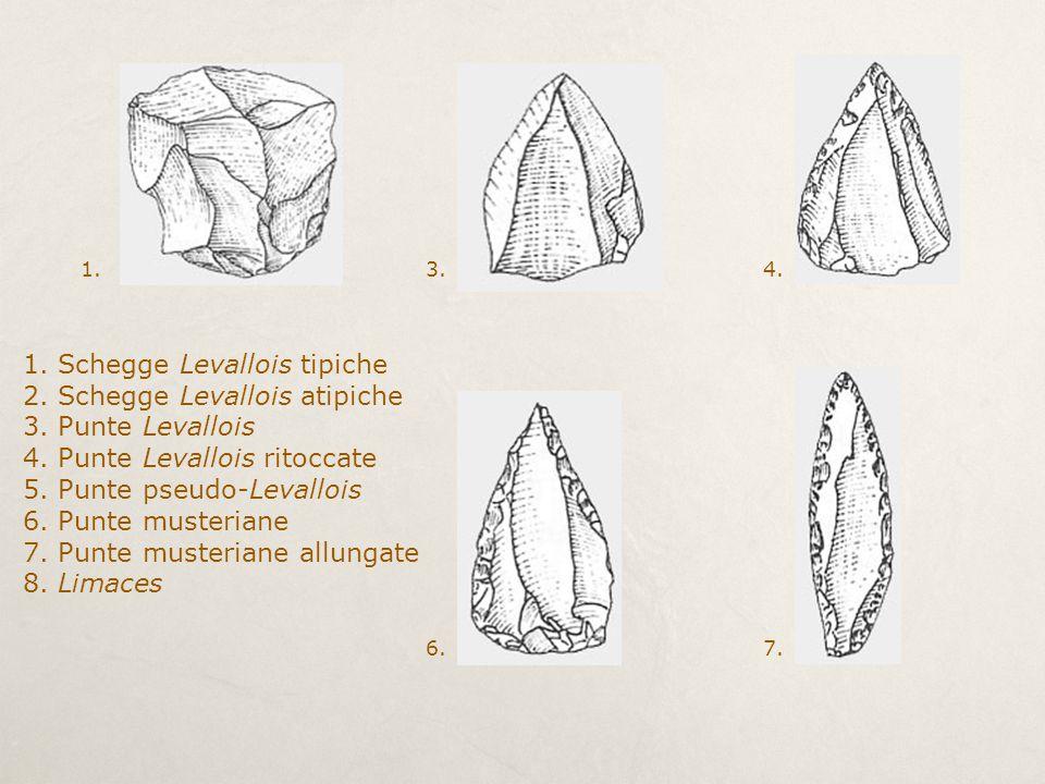 1. Schegge Levallois tipiche 2. Schegge Levallois atipiche 3. Punte Levallois 4. Punte Levallois ritoccate 5. Punte pseudo-Levallois 6. Punte musteria
