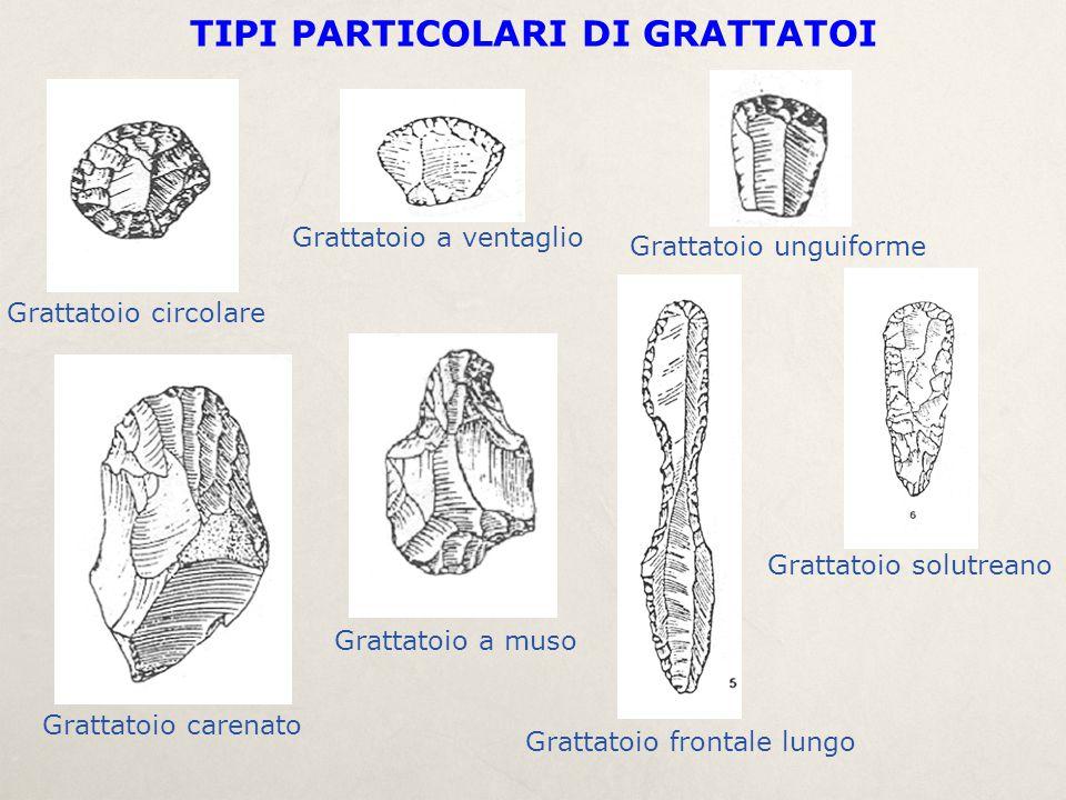 TIPI PARTICOLARI DI GRATTATOI Grattatoio circolare Grattatoio a ventaglio Grattatoio unguiforme Grattatoio carenato Grattatoio a muso Grattatoio front