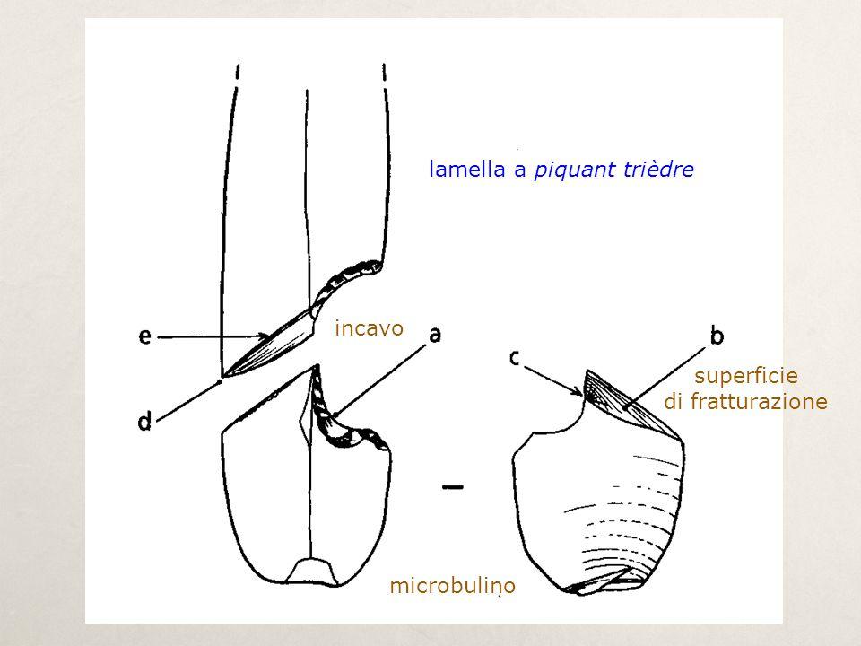 lamella a piquant trièdre microbulino incavo superficie di fratturazione