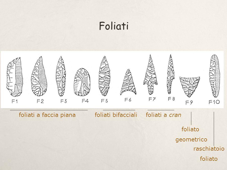 Foliati foliati a faccia pianafoliati bifaccialifoliati a cran foliato geometrico raschiatoio foliato