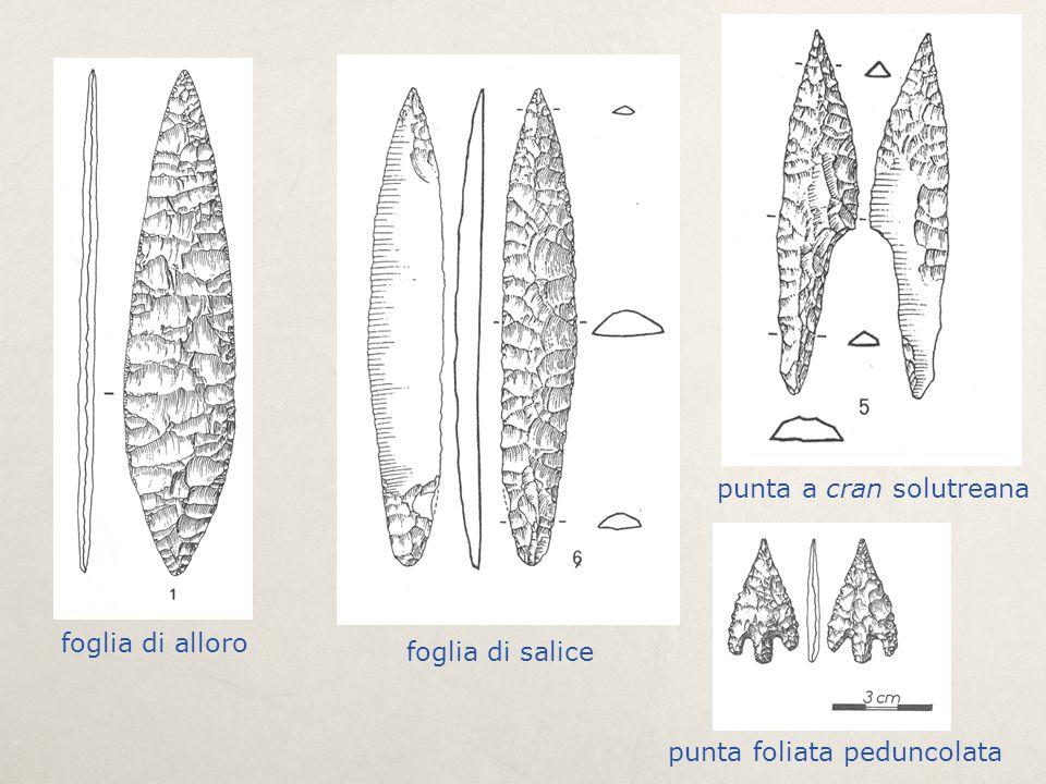 foglia di alloro foglia di salice punta a cran solutreana punta foliata peduncolata