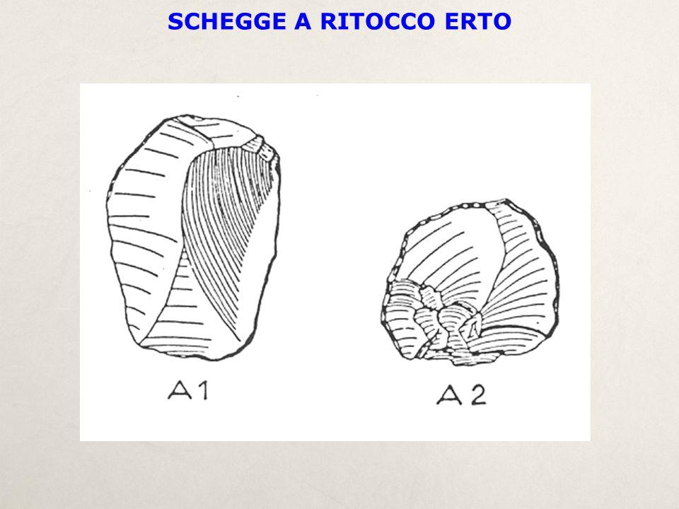 SCHEGGE A RITOCCO ERTO