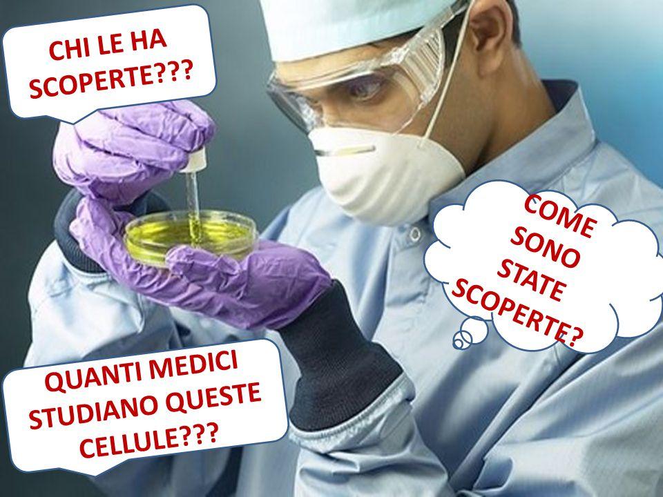 CHI LE HA SCOPERTE COME SONO STATE SCOPERTE QUANTI MEDICI STUDIANO QUESTE CELLULE