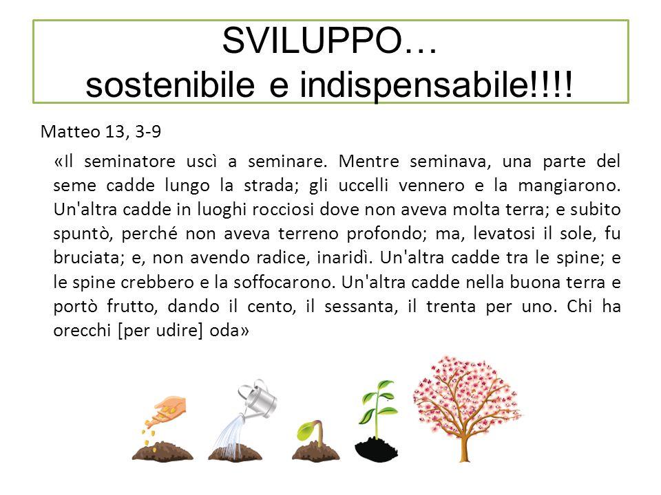 SVILUPPO… sostenibile e indispensabile!!!. Matteo 13, 3-9 «Il seminatore uscì a seminare.