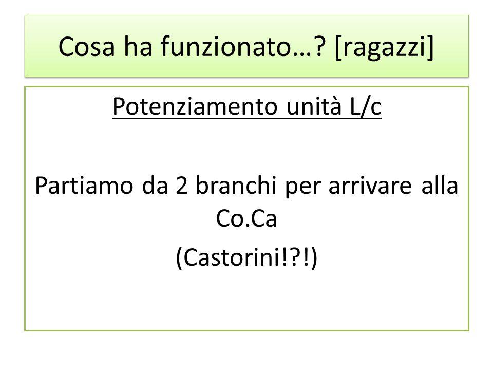 Cosa ha funzionato…? [ragazzi] Potenziamento unità L/c Partiamo da 2 branchi per arrivare alla Co.Ca (Castorini!?!)