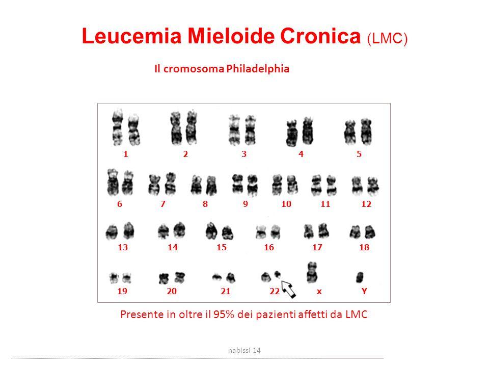 Leucemia Mieloide Cronica (LMC) Il cromosoma Philadelphia 12345 6781011912 131415161718 19202122xY Presente in oltre il 95% dei pazienti affetti da LMC nabissi 14
