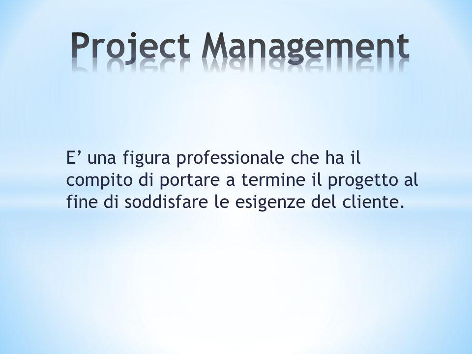 E' una figura professionale che ha il compito di portare a termine il progetto al fine di soddisfare le esigenze del cliente.