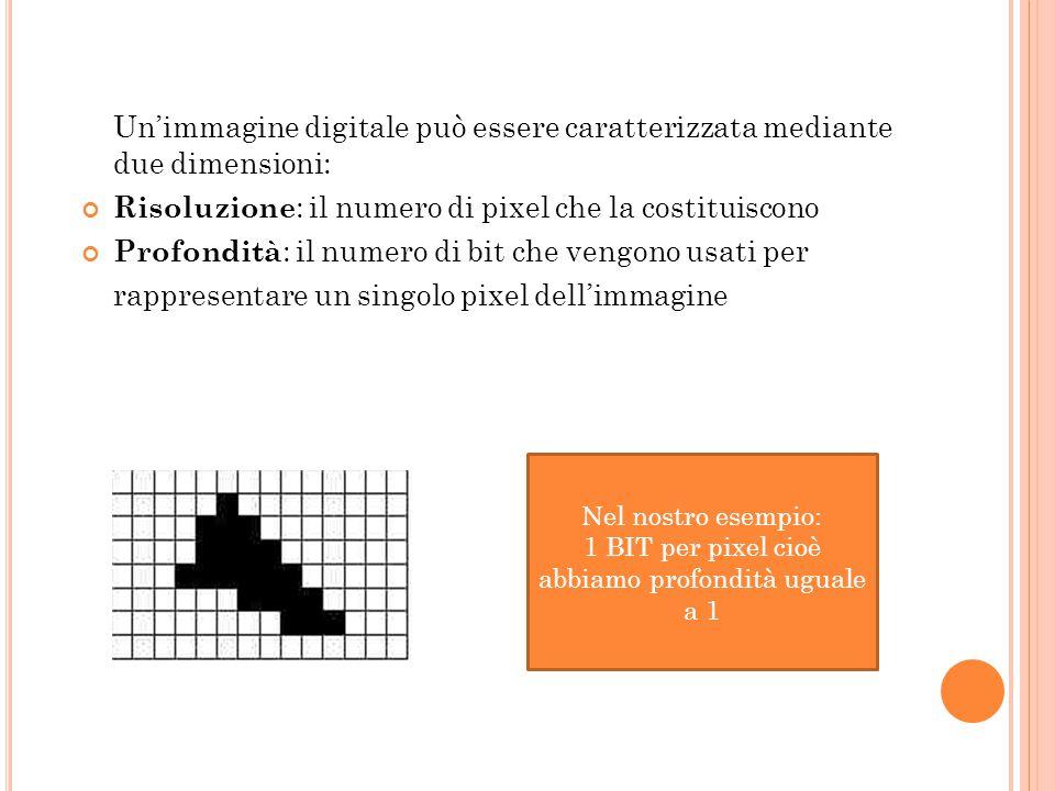 Un'immagine digitale può essere caratterizzata mediante due dimensioni: Risoluzione : il numero di pixel che la costituiscono Profondità : il numero d