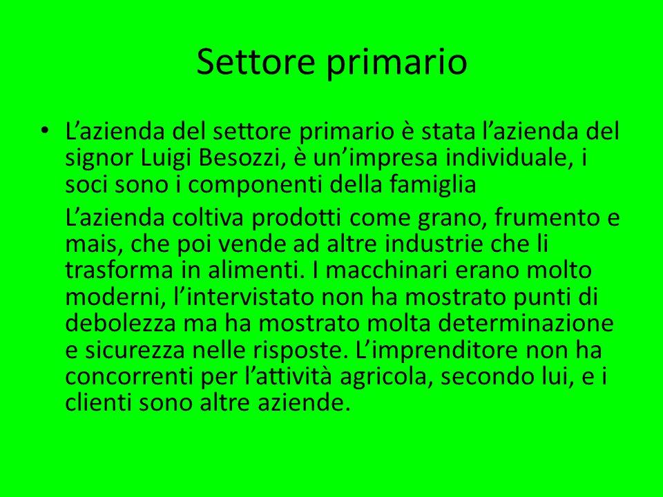 Settore primario L'azienda del settore primario è stata l'azienda del signor Luigi Besozzi, è un'impresa individuale, i soci sono i componenti della famiglia L'azienda coltiva prodotti come grano, frumento e mais, che poi vende ad altre industrie che li trasforma in alimenti.