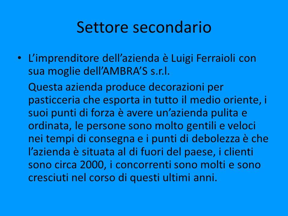 Settore secondario L'imprenditore dell'azienda è Luigi Ferraioli con sua moglie dell'AMBRA'S s.r.l.