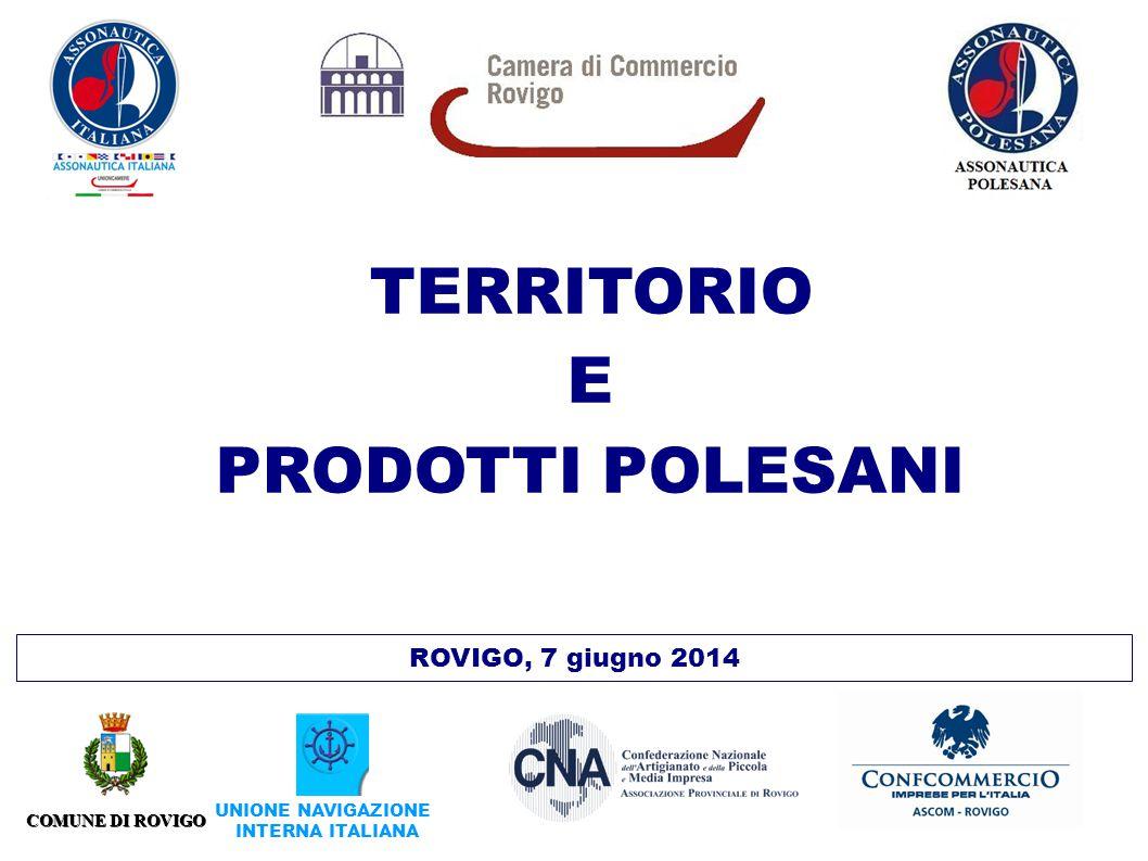 ROVIGO, 7 giugno 2014 COMUNE DI ROVIGO UNIONE NAVIGAZIONE INTERNA ITALIANA TERRITORIO E PRODOTTI POLESANI