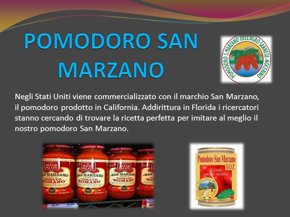 Negli Stati Uniti viene commercializzato con il marchio San Marzano, il pomodoro prodotto in California. Addirittura in Florida i ricercatori stanno c