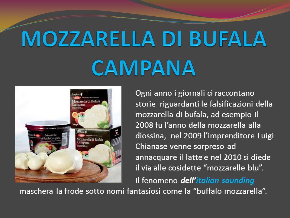 Ogni anno i giornali ci raccontano storie riguardanti le falsificazioni della mozzarella di bufala, ad esempio il 2008 fu l'anno della mozzarella alla