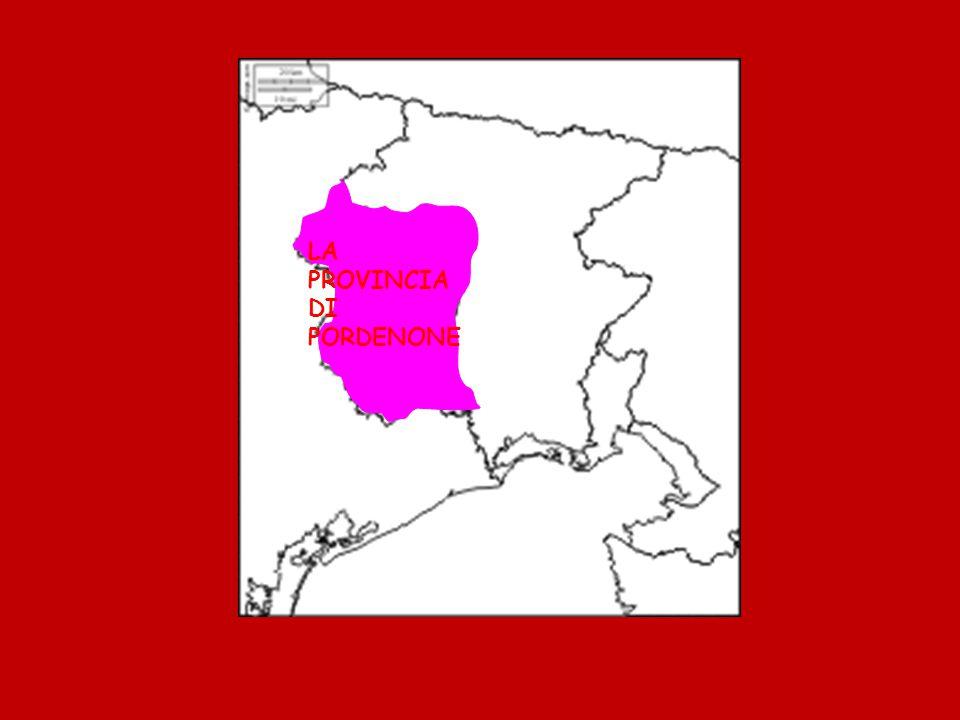 Il suo nome in latino è Portus Naomis ( vuol dire Porto sul fiume Naone ) Pordenone ha avuto una rilevante crescita demografica e anche edilizia.