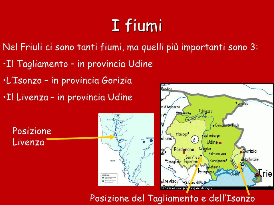 Clima Il clima è alpino (freddo d'inverno e fresco d'estate) a nord Invece a sud c'è il tipico clima padano: le estati sono calde e gli inverni sono freddi e piovosi Il Friuli è una regione particolarmente piovosa A Trieste, si sente spesso soffiare un vento freddo chiamato Bora