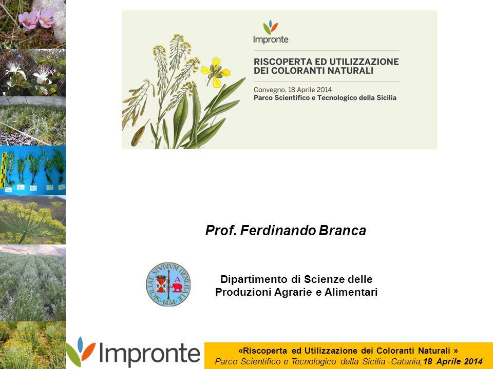 «Riscoperta ed Utilizzazione dei Coloranti Naturali » Parco Scientifico e Tecnologico della Sicilia -Catania,18 Aprile 2014 Prof. Ferdinando Branca Di