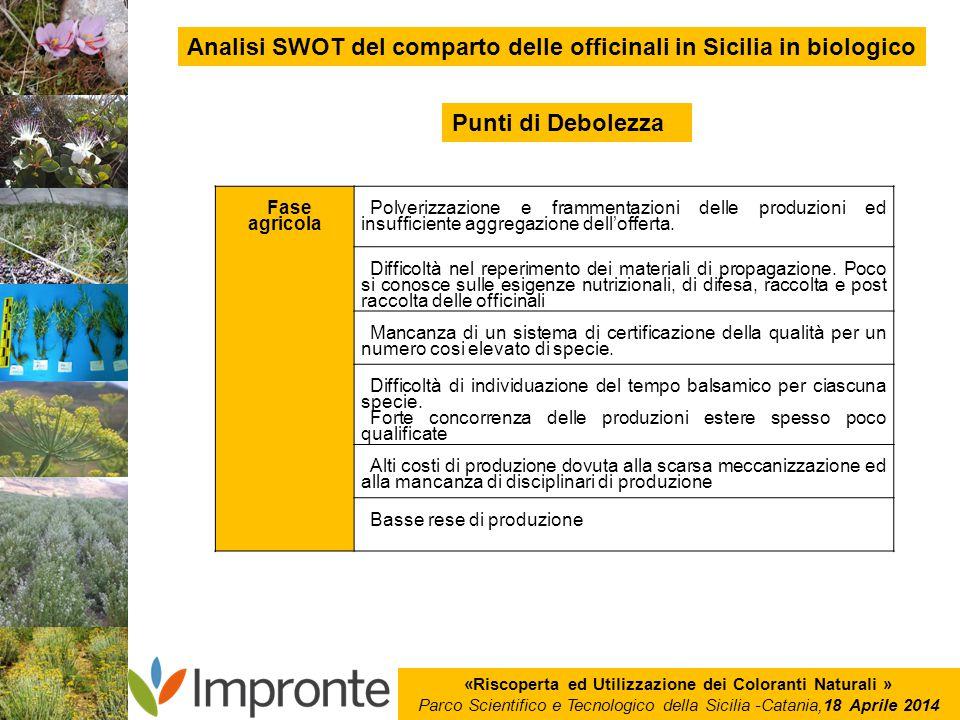 «Riscoperta ed Utilizzazione dei Coloranti Naturali » Parco Scientifico e Tecnologico della Sicilia -Catania,18 Aprile 2014 Analisi SWOT del comparto