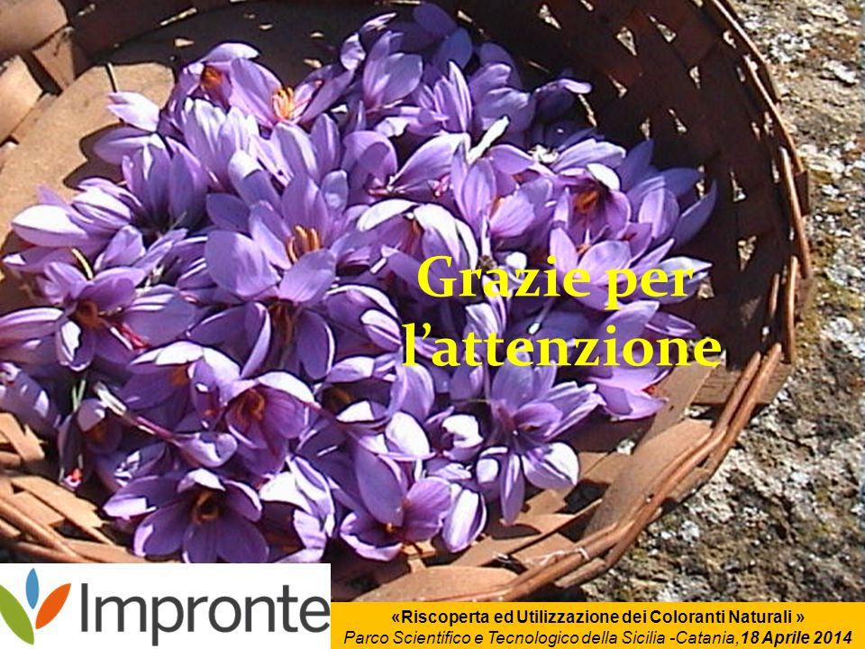 Grazie per l'attenzione «Riscoperta ed Utilizzazione dei Coloranti Naturali » Parco Scientifico e Tecnologico della Sicilia -Catania,18 Aprile 2014