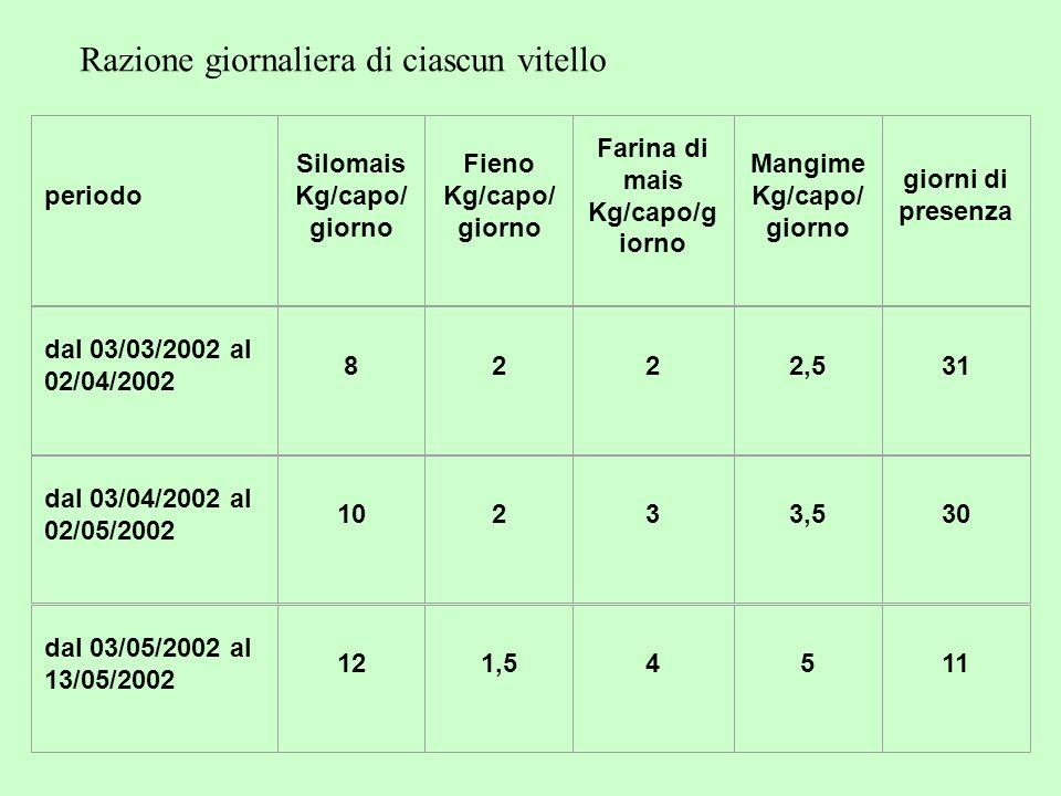 periodo Silomais Kg/capo/ giorno Fieno Kg/capo/ giorno Farina di mais Kg/capo/g iorno Mangime Kg/capo/ giorno giorni di presenza dal 03/03/2002 al 02/04/2002 8222,531 dal 03/04/2002 al 02/05/2002 10233,530 dal 03/05/2002 al 13/05/2002 121,54511 Razione giornaliera di ciascun vitello