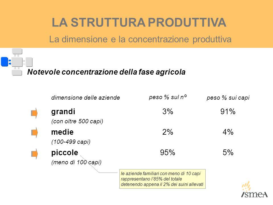 La dimensione e la concentrazione produttiva LA STRUTTURA PRODUTTIVA Notevole concentrazione della fase agricola dimensione delle aziendepeso % sul n°