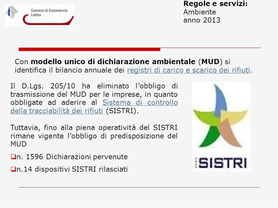 Regole e servizi: Ambiente anno 2013 Il D.Lgs.