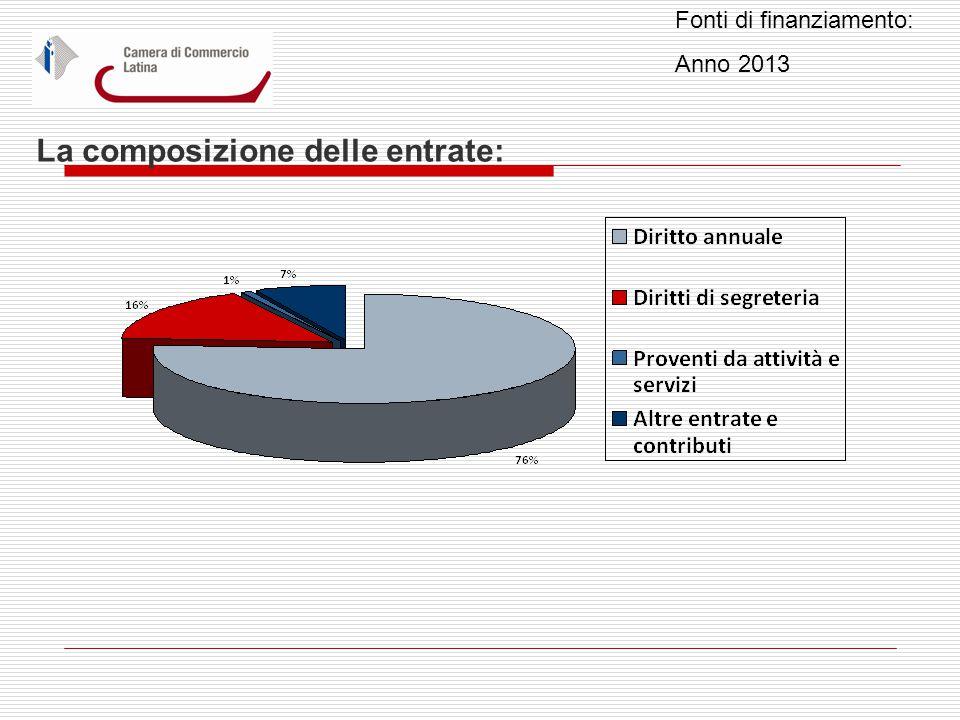 La composizione delle entrate: Fonti di finanziamento: Anno 2013