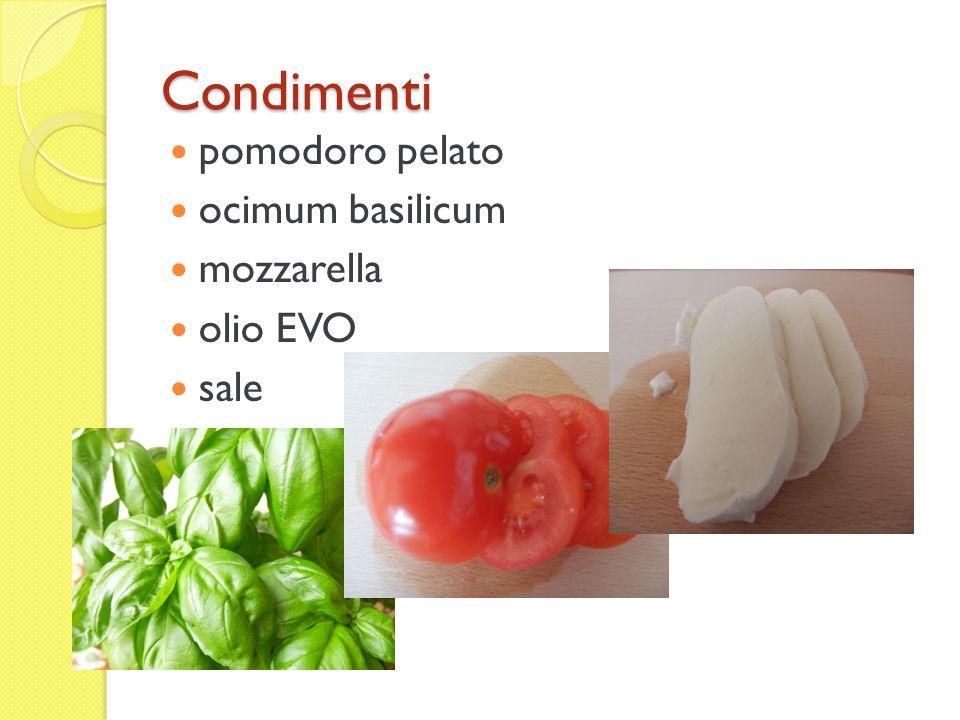 Condimenti pomodoro pelato ocimum basilicum mozzarella olio EVO sale