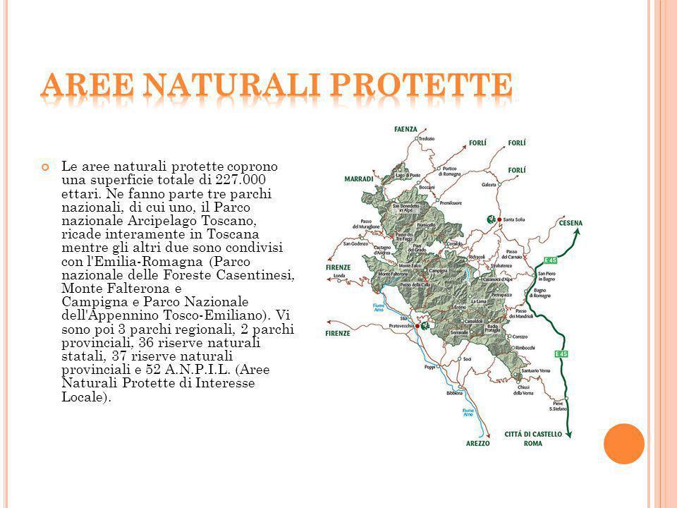 Le aree naturali protette coprono una superficie totale di 227.000 ettari. Ne fanno parte tre parchi nazionali, di cui uno, il Parco nazionale Arcipel