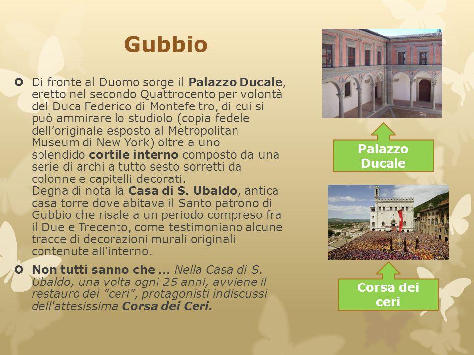Gubbio  Di fronte al Duomo sorge il Palazzo Ducale, eretto nel secondo Quattrocento per volontà del Duca Federico di Montefeltro, di cui si può ammir