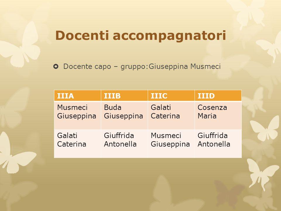 Docenti accompagnatori  Docente capo – gruppo:Giuseppina Musmeci IIIAIIIBIIICIIID Musmeci Giuseppina Buda Giuseppina Galati Caterina Cosenza Maria Ga
