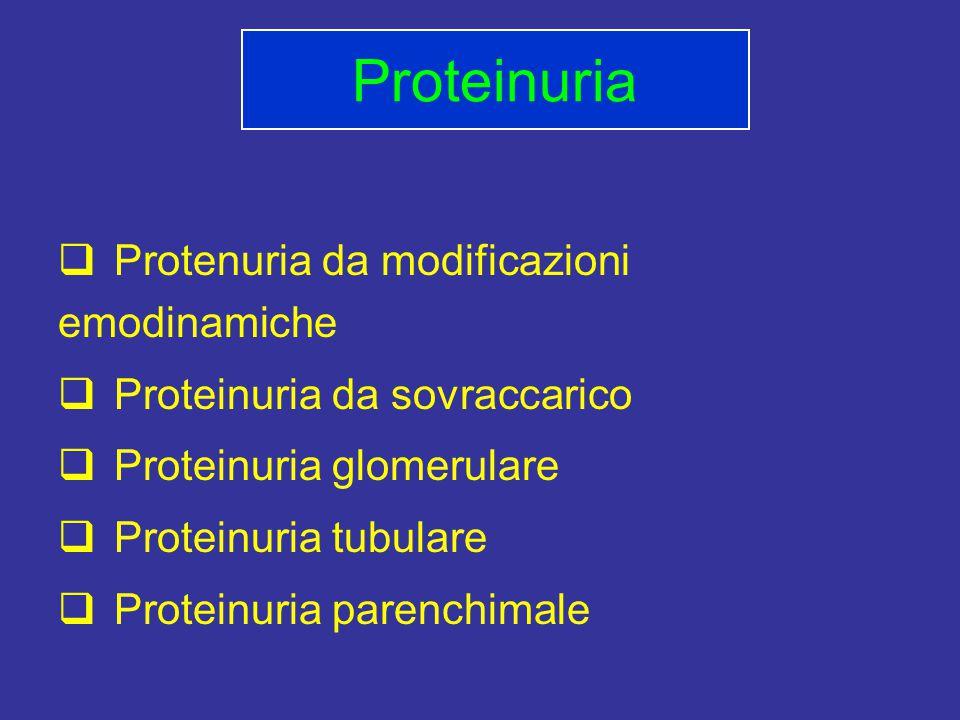  Protenuria da modificazioni emodinamiche  Proteinuria da sovraccarico  Proteinuria glomerulare  Proteinuria tubulare  Proteinuria parenchimale Proteinuria