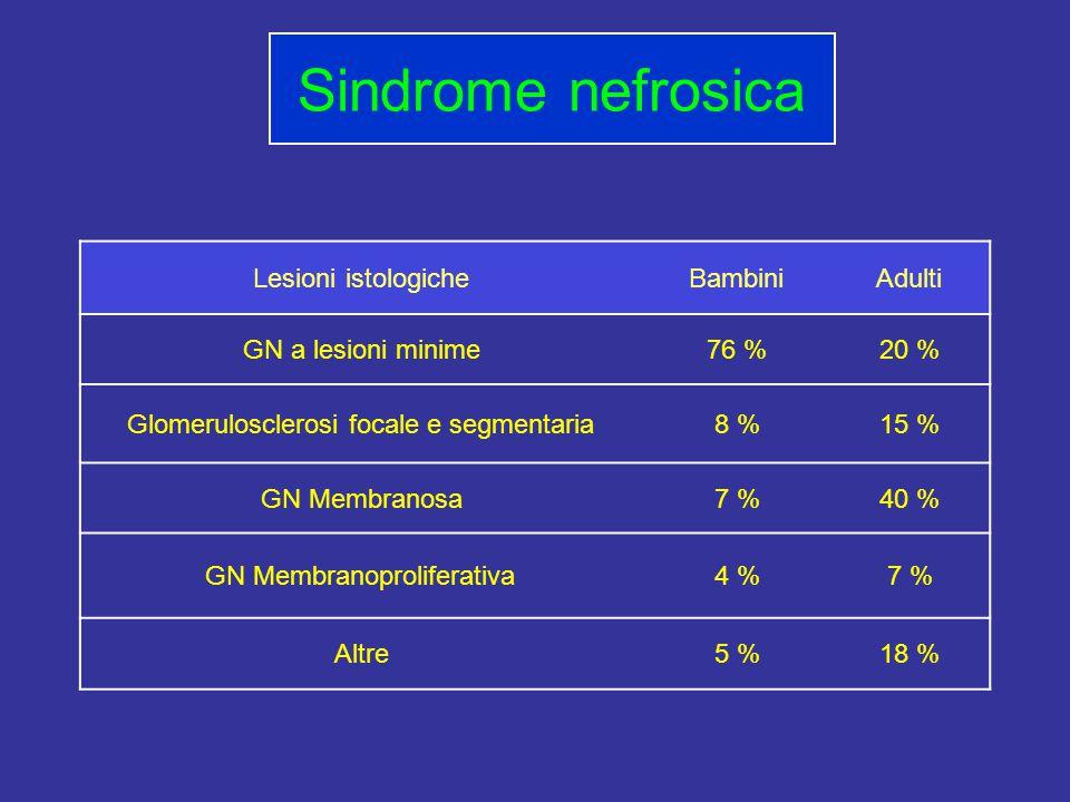 Lesioni istologicheBambiniAdulti GN a lesioni minime76 %20 % Glomerulosclerosi focale e segmentaria8 %15 % GN Membranosa7 %40 % GN Membranoproliferativa4 %7 % Altre5 %18 % Sindrome nefrosica